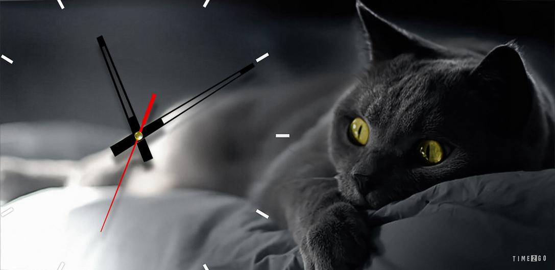 Настенные часы с котом