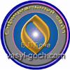 Сайт В.П.Гоча